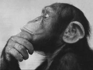 thinker 002