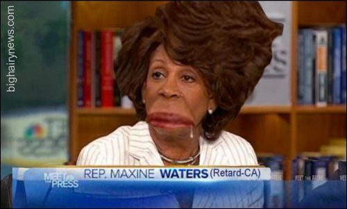 Maxine waters -- retard