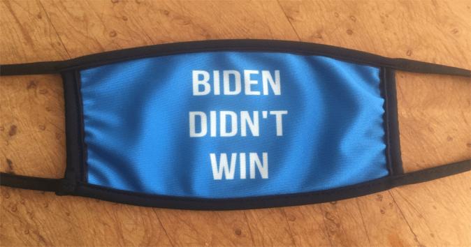 BIDEN  DIDN'T  WIN